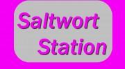 Listen to radio saltwort